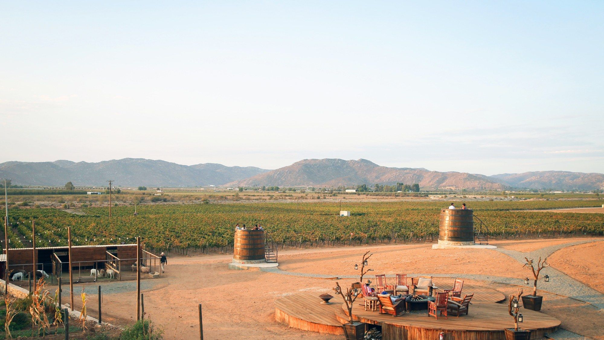 Best  Baja California Wine Tours