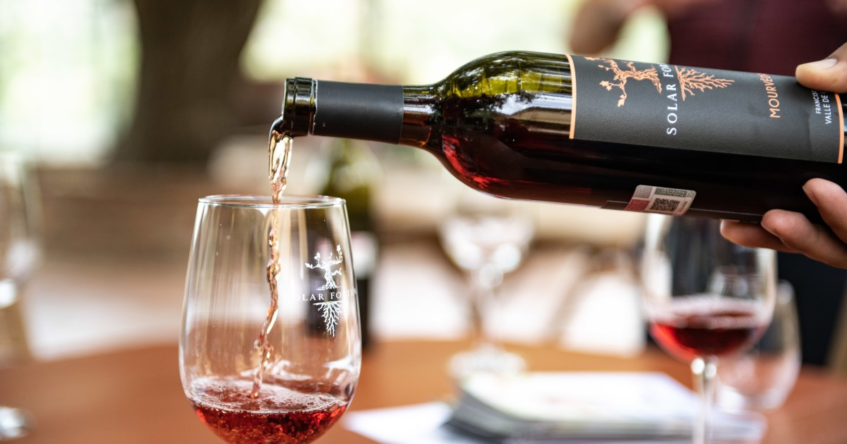 New wine club delivers Valle de Guadalupe experience
